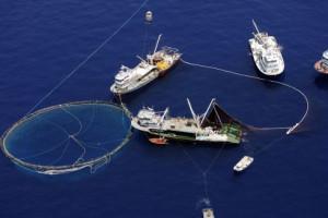 Un thonier-senneur et son filet en Méditerranée - Crédit : Greenpeace/DR